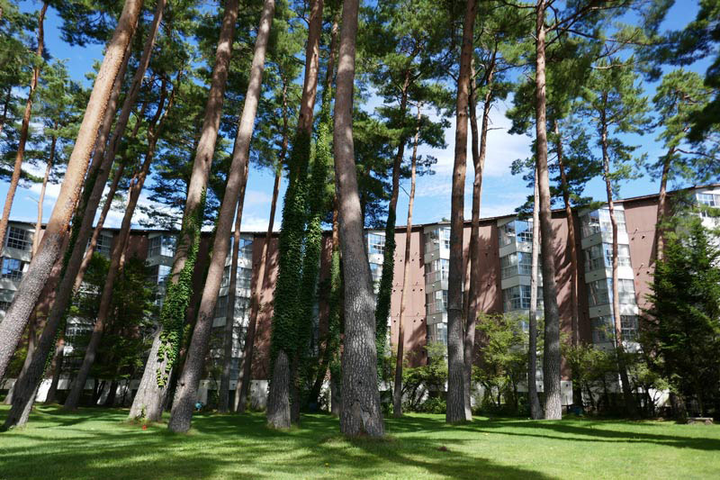 fuji premium resort 富士尊享度假飯店Forest Village外觀