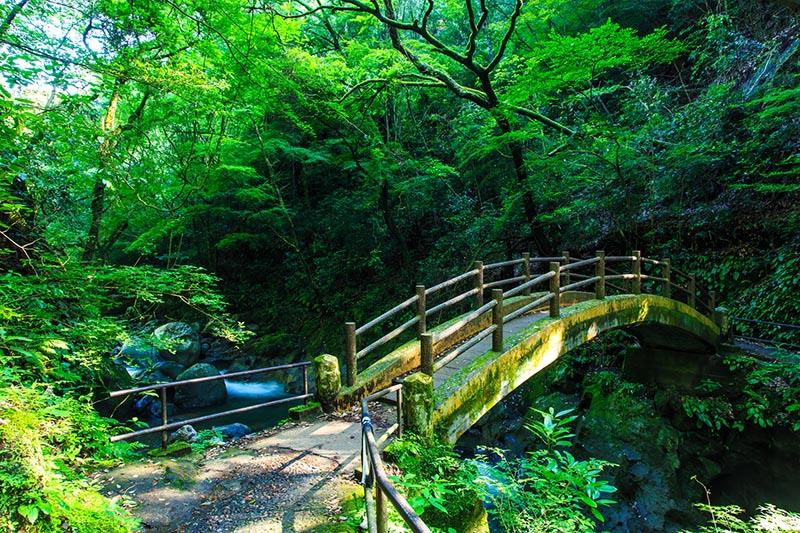 天岩戶神社的太鼓橋