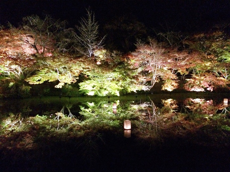 御船山樂園的紅楓點燈活動