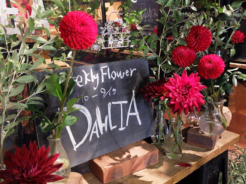 Aoyama Flower Market TEA HOUSE南青山本店的大理花