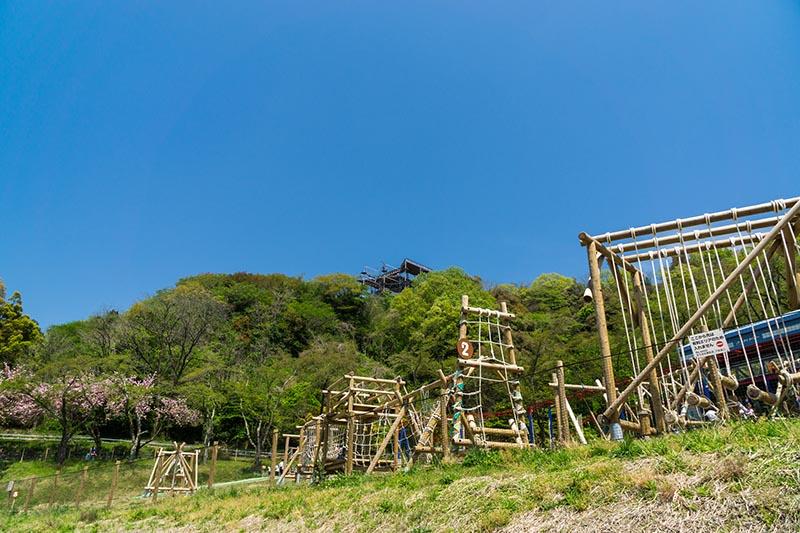 森林遊樂園的戶外運動設施