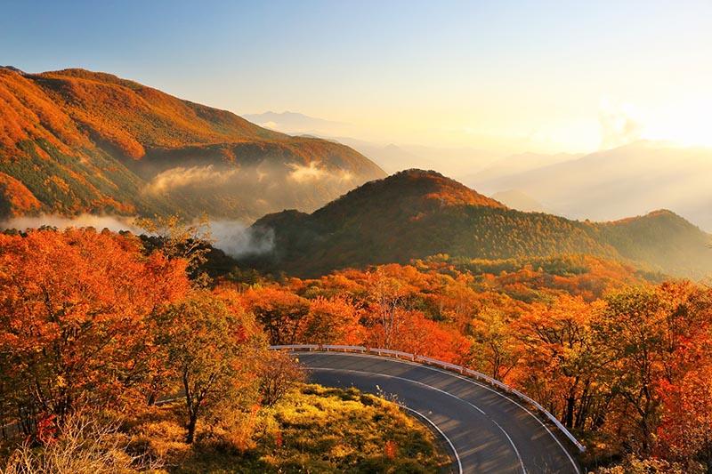 秋季的日光