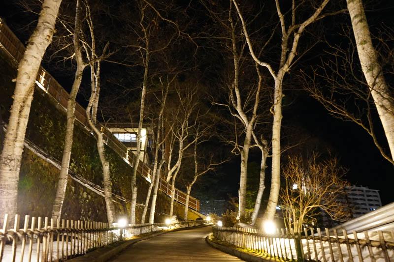 草津溫泉旅館 望雲