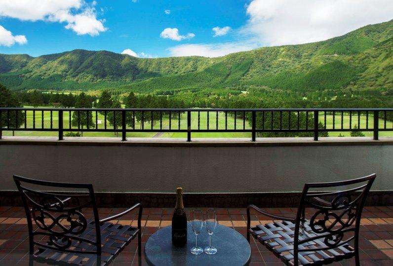 仙石原王子大飯店的景色