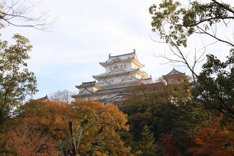 姫路城與楓葉
