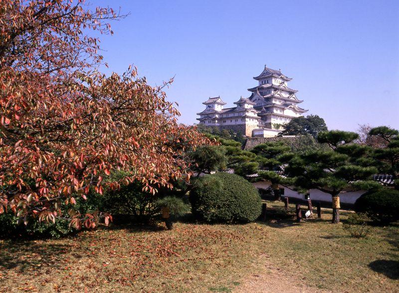 秋天的西之丸庭園