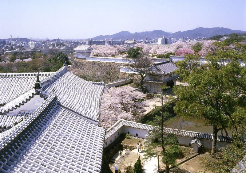 菱之門瞭望姬路城的景色