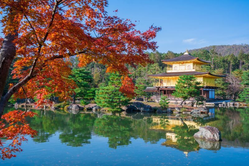 秋天的金閣寺與楓葉