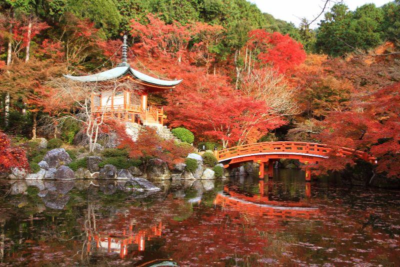 醍醐寺弁天堂的楓葉