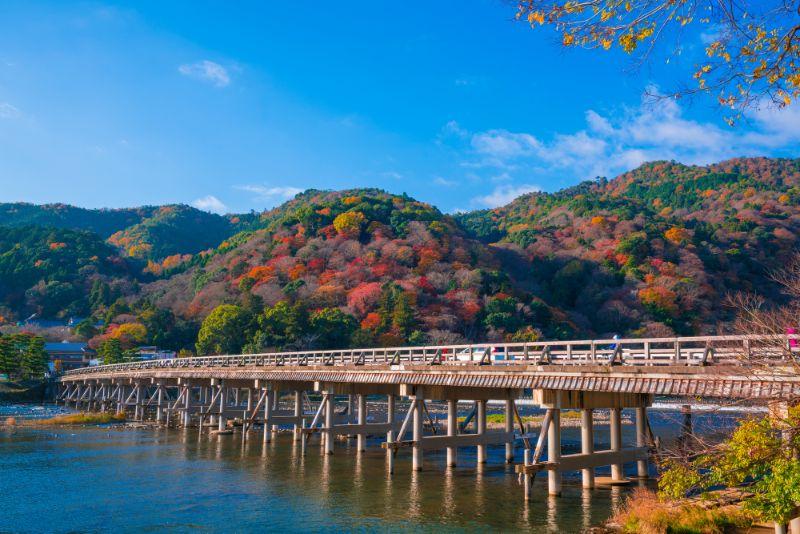 嵐山渡月橋的楓葉