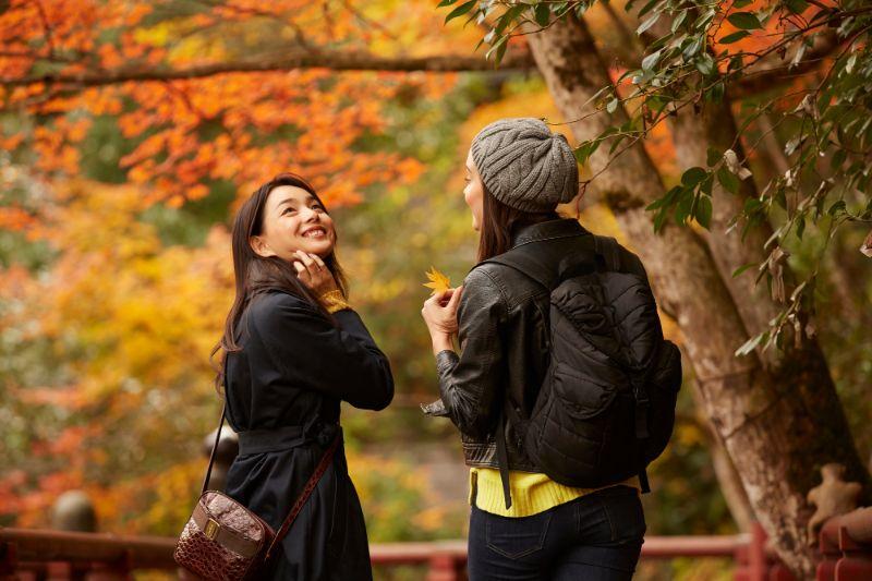 賞楓的外國觀光客