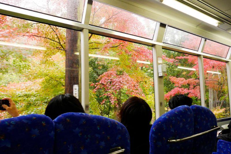 叡山電車和楓葉隧道