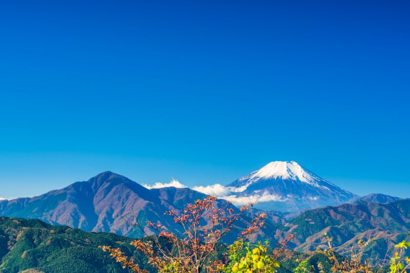 高尾山 山頂看富士山