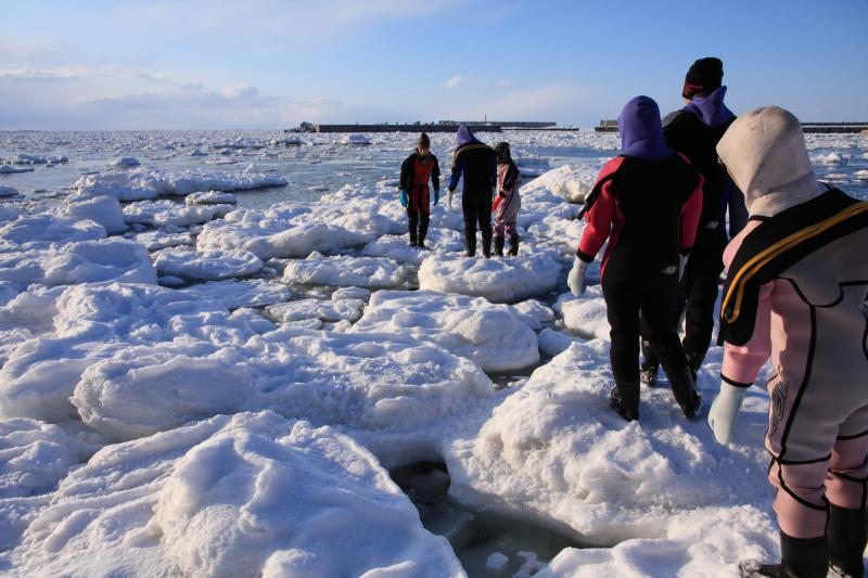 北海道網走流冰