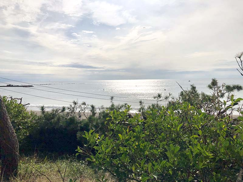葉山潮騷公園欣賞一色海岸