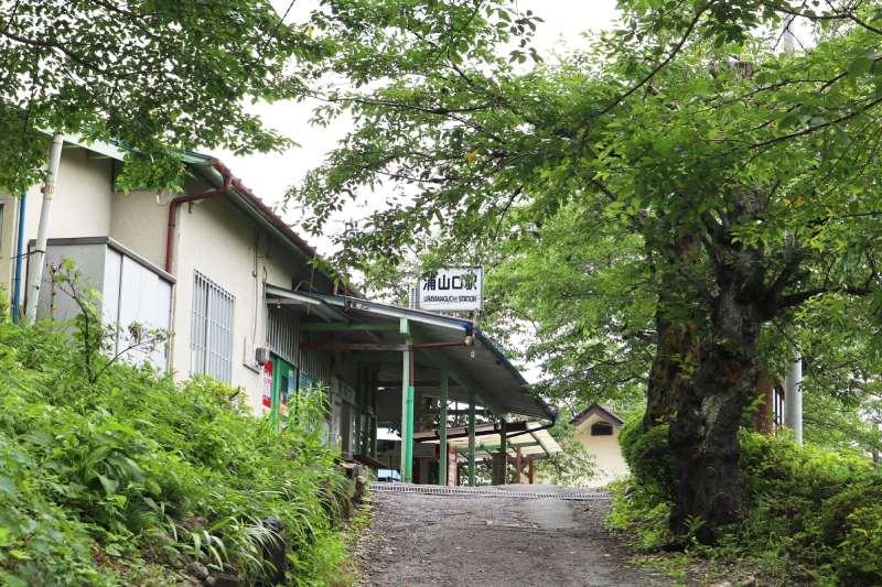 斜坡上的小車站被綠色的植物包圍著