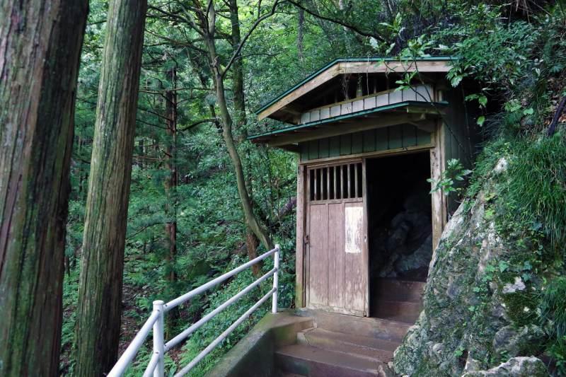 綠色森林中的鐘乳石洞穴出口