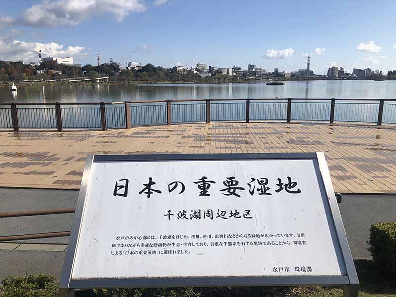 千波湖日本重要濕地