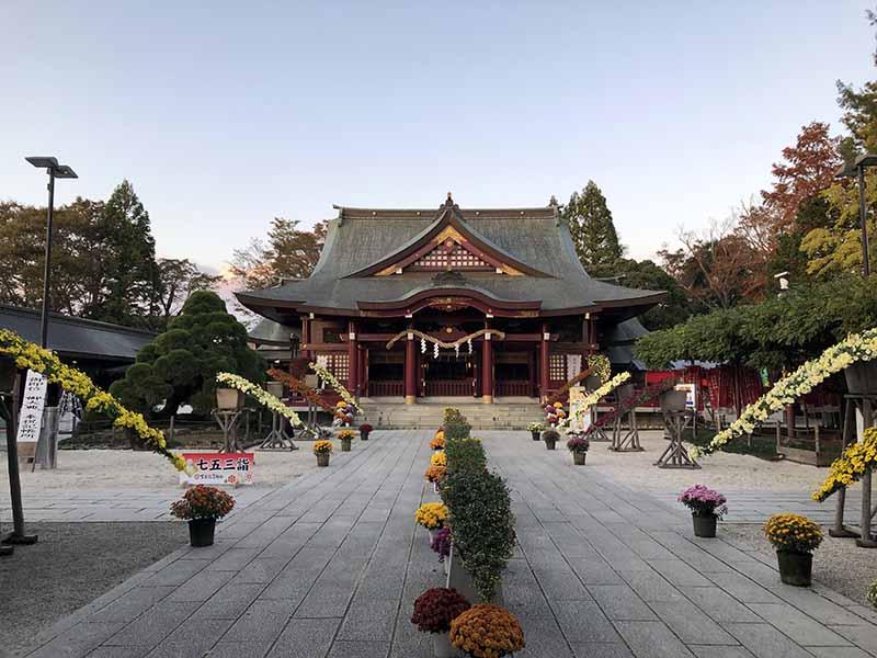 茨城笠間稻荷神社拜殿菊花季