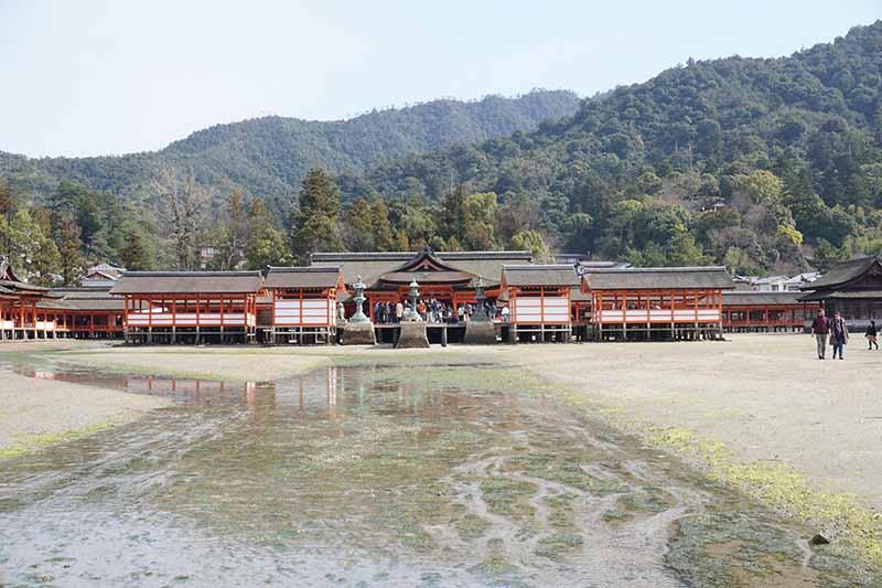 嚴島神社與後方彌山原始林