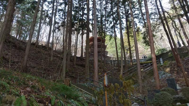 安樂寺國寶八角三重塔與樹林