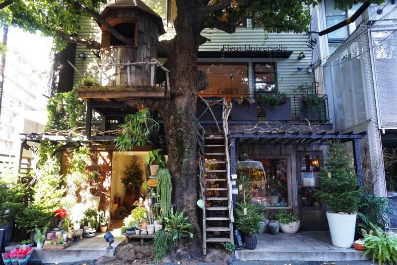 樹屋咖啡Les Grands Arbres外觀