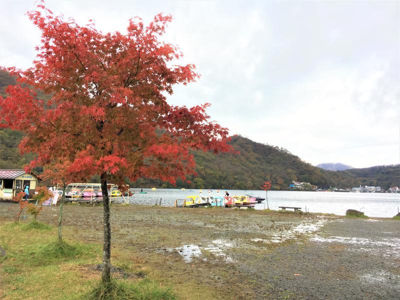 榛名湖畔散步