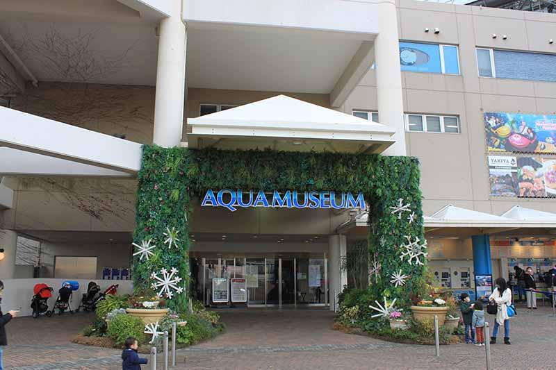 Aqua Museum