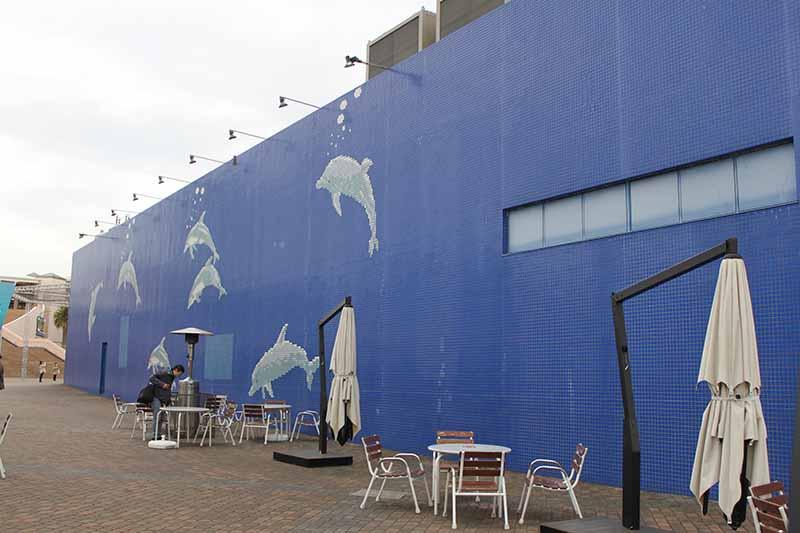 海豚夢幻館