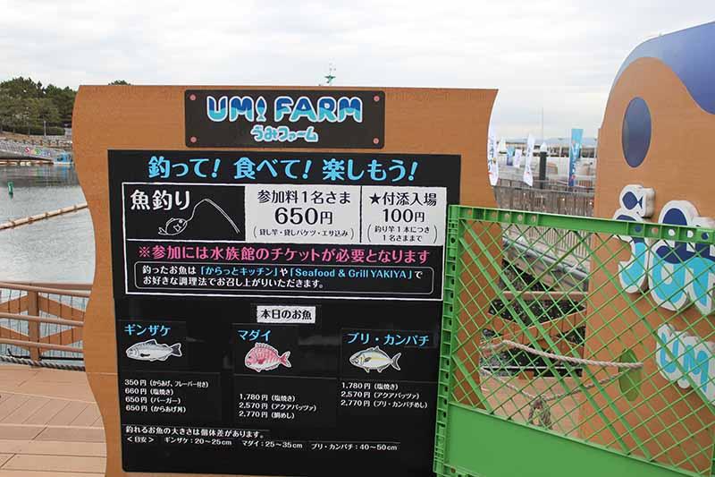 UMI Farm