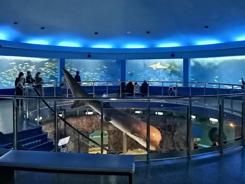 水族館「魚之國」