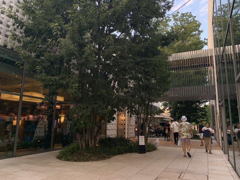 代官山T-Site