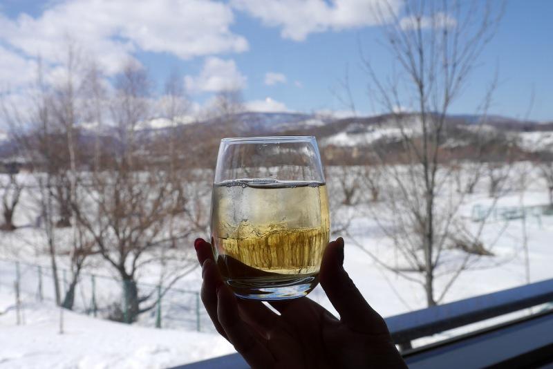 余市蒸餾所的試飲威士忌
