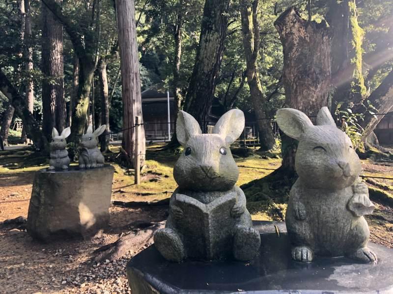 島根出雲大社兔子石像