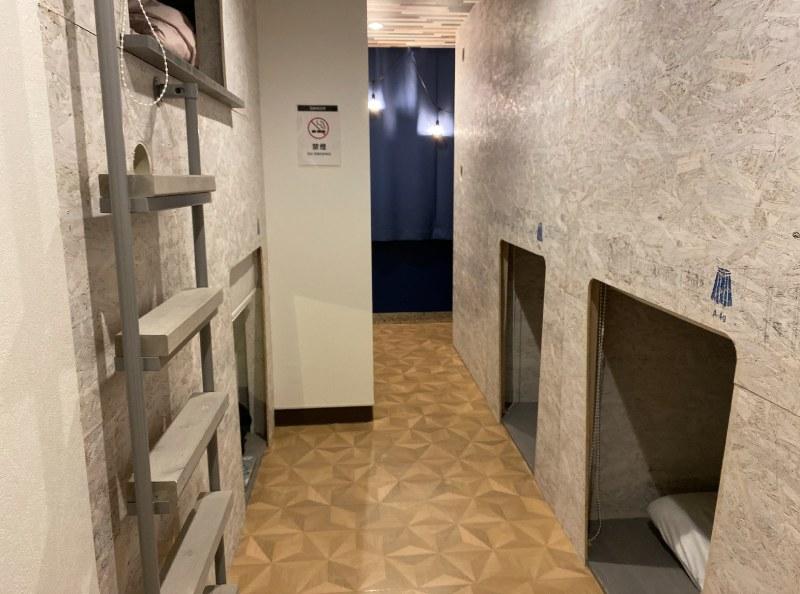 青旅CO-YA的女性專用房間